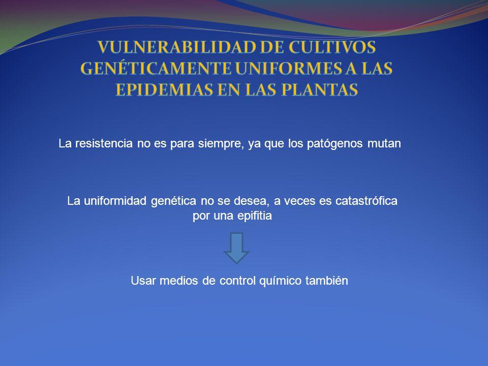 La resistencia no es para siempre, ya que los patógenos mutan La uniformidad genética no se desea, a veces es catastrófica por una epifitia Usar medio