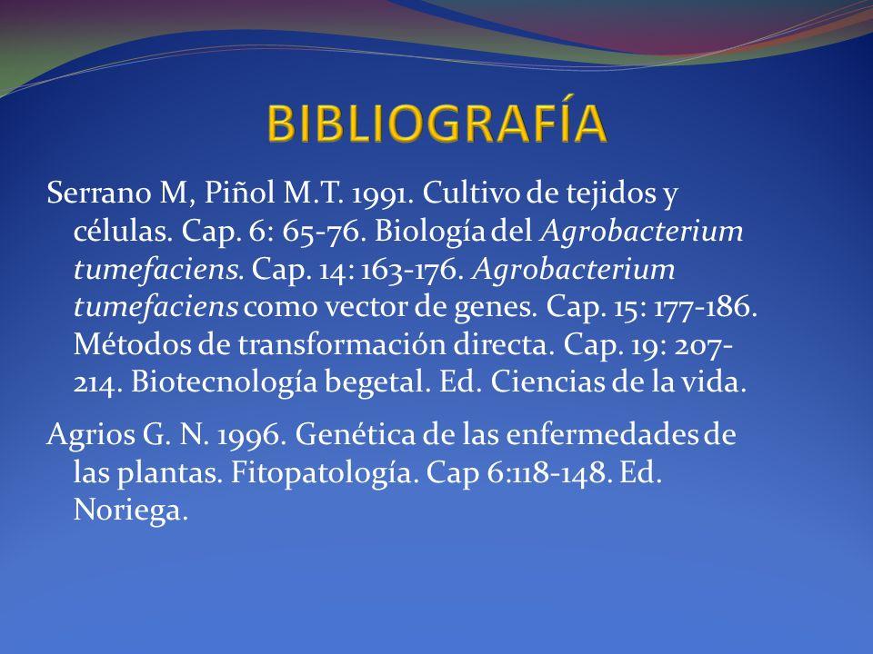 Serrano M, Piñol M.T. 1991. Cultivo de tejidos y células. Cap. 6: 65-76. Biología del Agrobacterium tumefaciens. Cap. 14: 163-176. Agrobacterium tumef