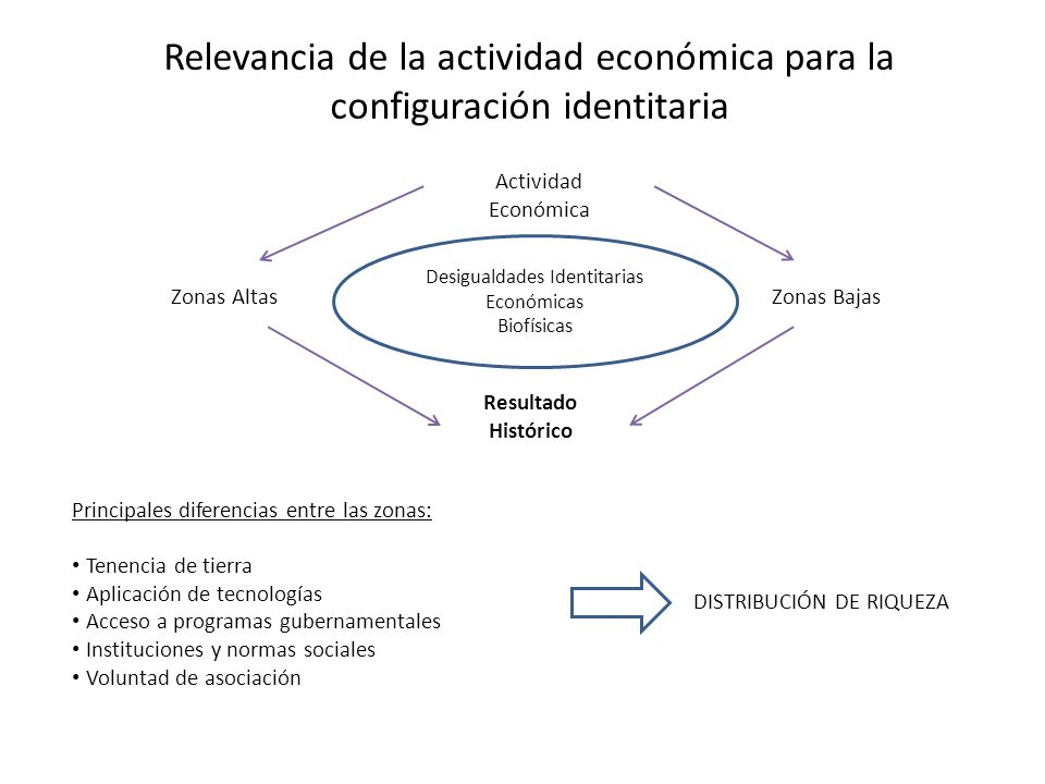 Principales diferencias entre las zonas: Tenencia de tierra Aplicación de tecnologías Acceso a programas gubernamentales Instituciones y normas social