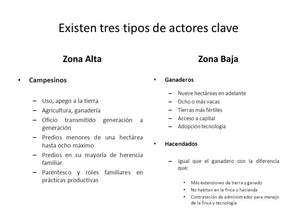 Existen tres tipos de actores clave Zona Alta Campesinos – Uso, apego a la tierra – Agricultura, ganadería – Oficio transmitido generación a generació
