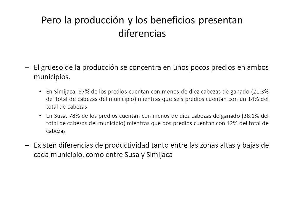 Pero la producción y los beneficios presentan diferencias – El grueso de la producción se concentra en unos pocos predios en ambos municipios. En Simi