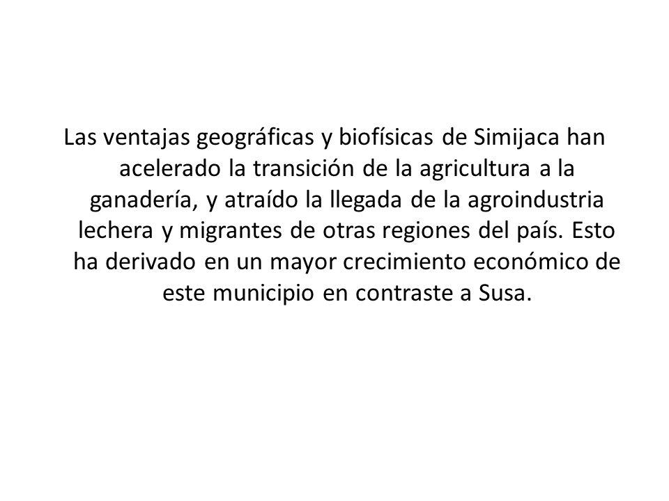 Las ventajas geográficas y biofísicas de Simijaca han acelerado la transición de la agricultura a la ganadería, y atraído la llegada de la agroindustr