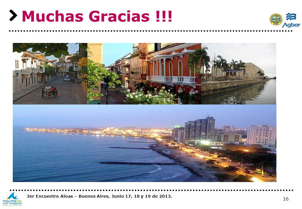 16 Muchas Gracias !!! 3er Encuentro Aloas – Buenos Aires, Junio 17, 18 y 19 de 2013.