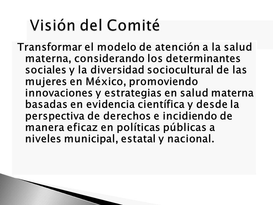 Visión del Comité Transformar el modelo de atención a la salud materna, considerando los determinantes sociales y la diversidad sociocultural de las m