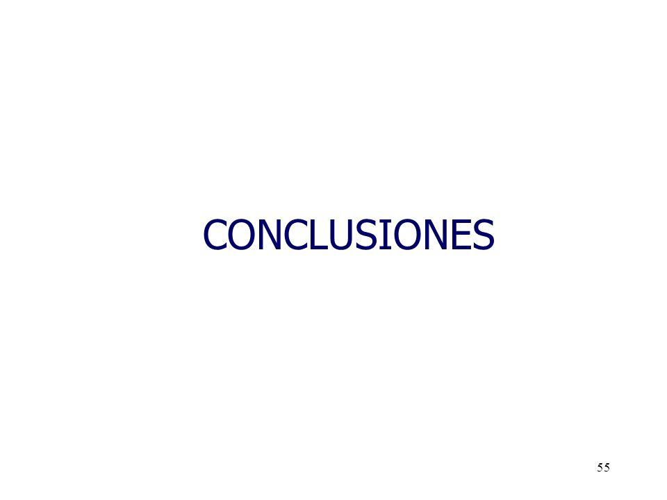 55 CONCLUSIONES