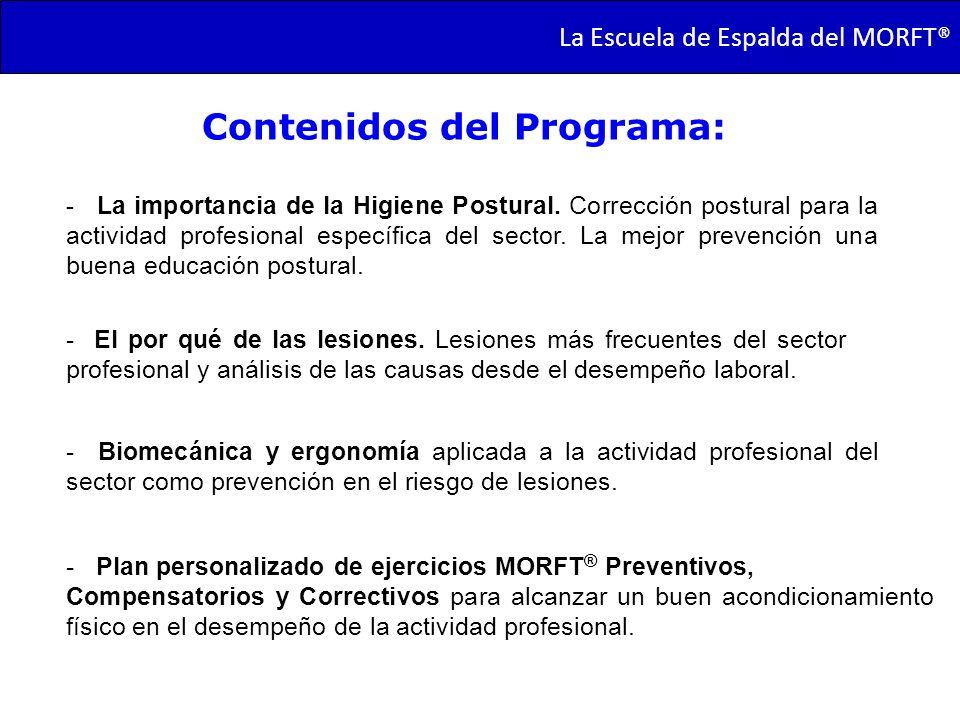 TRANSMORFT – Agosto de 2011 Contenidos del Programa: - La importancia de la Higiene Postural. Corrección postural para la actividad profesional especí