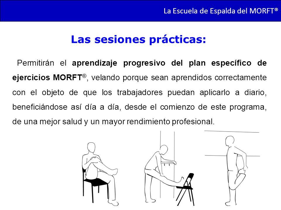 TRANSMORFT – Agosto de 2011 Permitirán el aprendizaje progresivo del plan específico de ejercicios MORFT ®, velando porque sean aprendidos correctamen