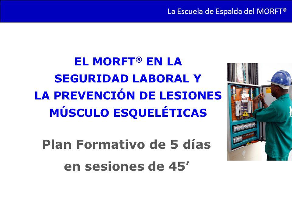 La Escuela de Espalda del MORFT® Plan Formativo de 5 días en sesiones de 45 EL MORFT ® EN LA SEGURIDAD LABORAL Y LA PREVENCIÓN DE LESIONES MÚSCULO ESQ