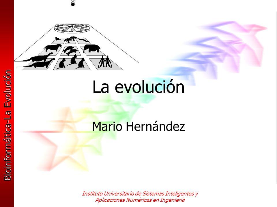 Bioinformática-La Evolución Instituto Universitario de Sistemas Inteligentes y Aplicaciones Numéricas en Ingeniería Mecanismos de cambio en la evolución Los describiremos para intentar entender los algoritmos evolutivos, ya que se trata de imitarlos para resolver problemas en diversos campos