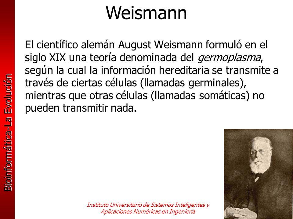 Bioinformática-La Evolución Instituto Universitario de Sistemas Inteligentes y Aplicaciones Numéricas en Ingeniería El científico alemán August Weisma