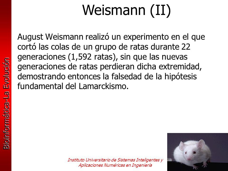 Bioinformática-La Evolución Instituto Universitario de Sistemas Inteligentes y Aplicaciones Numéricas en Ingeniería August Weismann realizó un experim