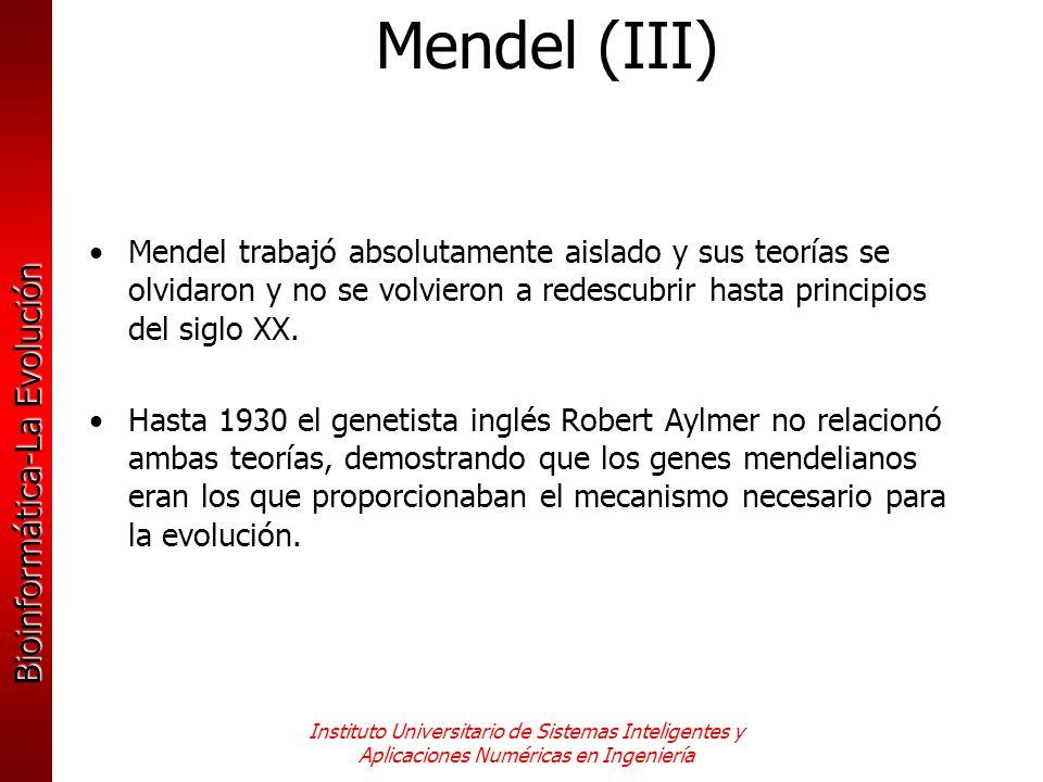 Bioinformática-La Evolución Instituto Universitario de Sistemas Inteligentes y Aplicaciones Numéricas en Ingeniería Mendel trabajó absolutamente aisla