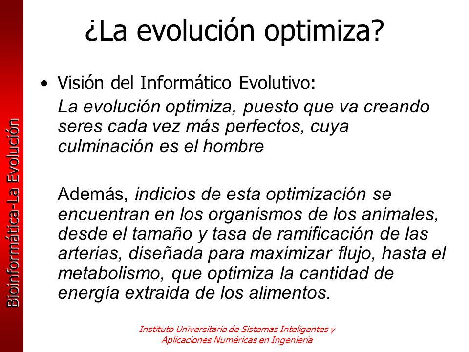 Bioinformática-La Evolución Instituto Universitario de Sistemas Inteligentes y Aplicaciones Numéricas en Ingeniería ¿La evolución optimiza? Visión del
