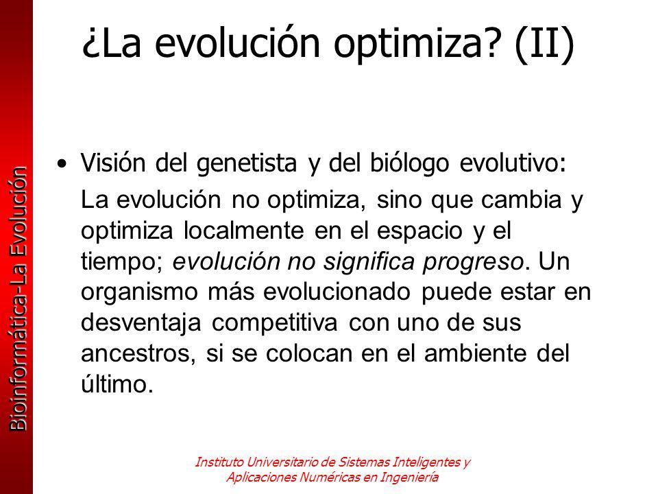 Bioinformática-La Evolución Instituto Universitario de Sistemas Inteligentes y Aplicaciones Numéricas en Ingeniería ¿La evolución optimiza? (II) Visió