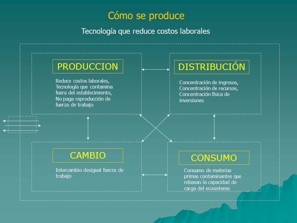 Cómo se produce PRODUCCION Reduce costos laborales, Tecnología que contamina fuera del establecimiento, No paga reproducción de fuerza de trabajo DIST