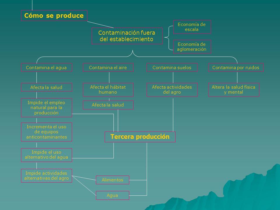 Cómo se produce Contaminación fuera del establecimiento Economía de escala Economía de aglomeración Contamina el aguaContamina el aireContamina suelos