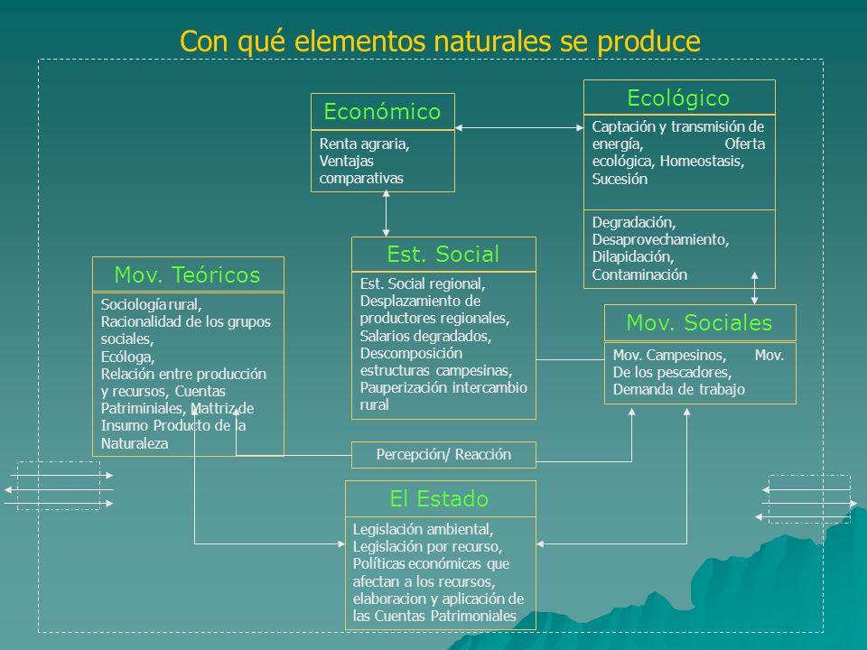 Económico Renta agraria, Ventajas comparativas Ecológico Captación y transmisión de energía, Oferta ecológica, Homeostasis, Sucesión Degradación, Desa