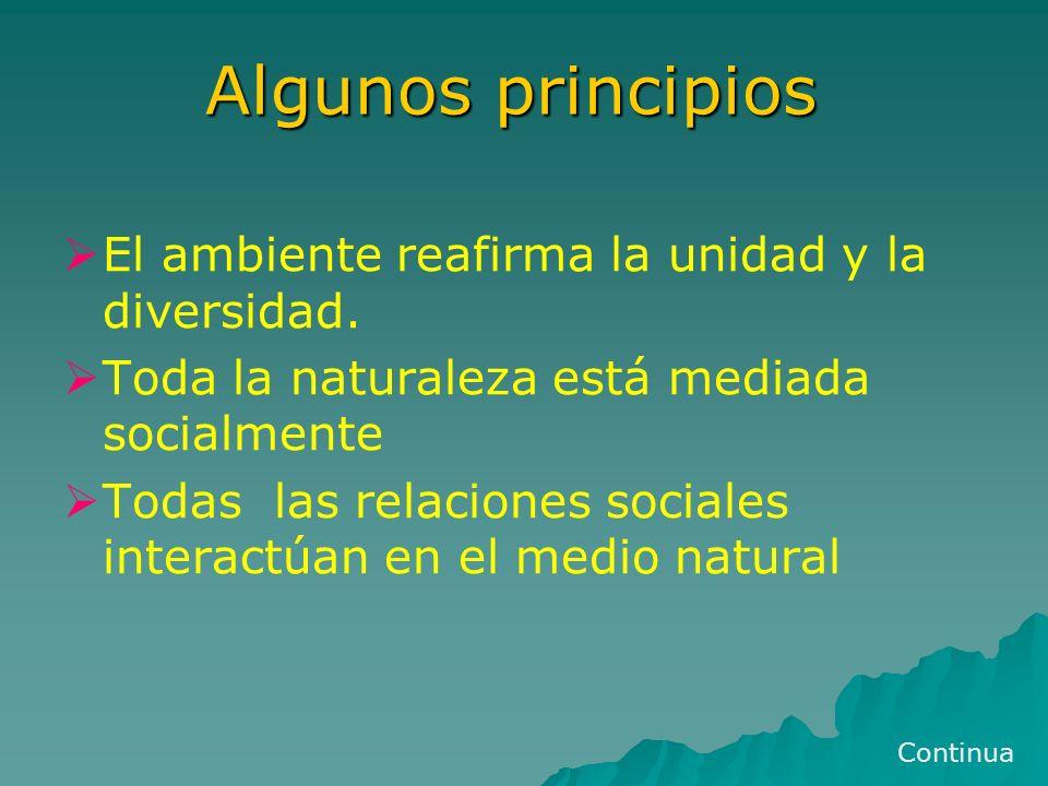 Algunos principios El ambiente reafirma la unidad y la diversidad. Toda la naturaleza está mediada socialmente Todas las relaciones sociales interactú