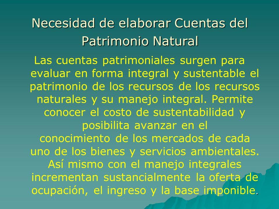 Necesidad de elaborar Cuentas del Patrimonio Natural. Las cuentas patrimoniales surgen para evaluar en forma integral y sustentable el patrimonio de l