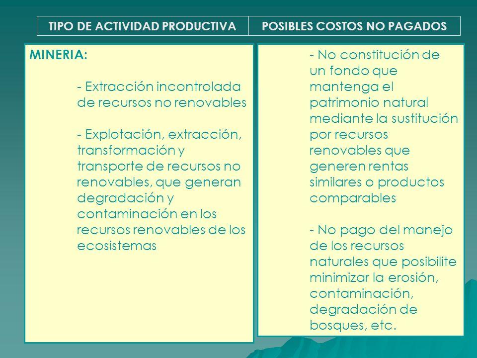 TIPO DE ACTIVIDAD PRODUCTIVAPOSIBLES COSTOS NO PAGADOS MINERIA: - Extracción incontrolada de recursos no renovables - Explotación, extracción, transfo