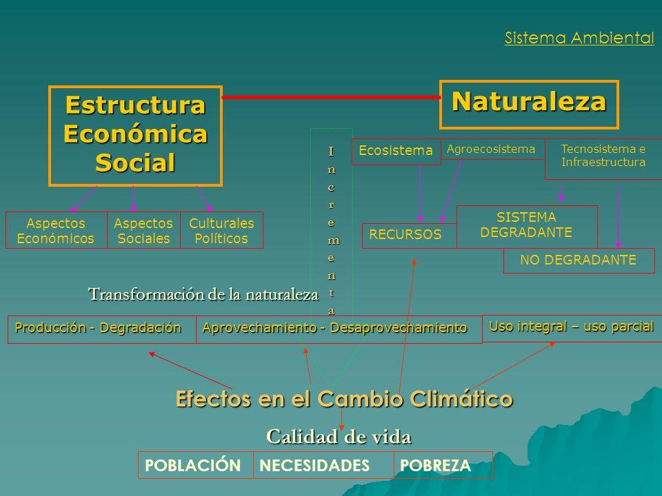 Sistema Ambiental Transformación de la naturaleza Estructura Económica Social Naturaleza IncrementaIncrementaIncrementaIncrementa Calidad de vida Prod