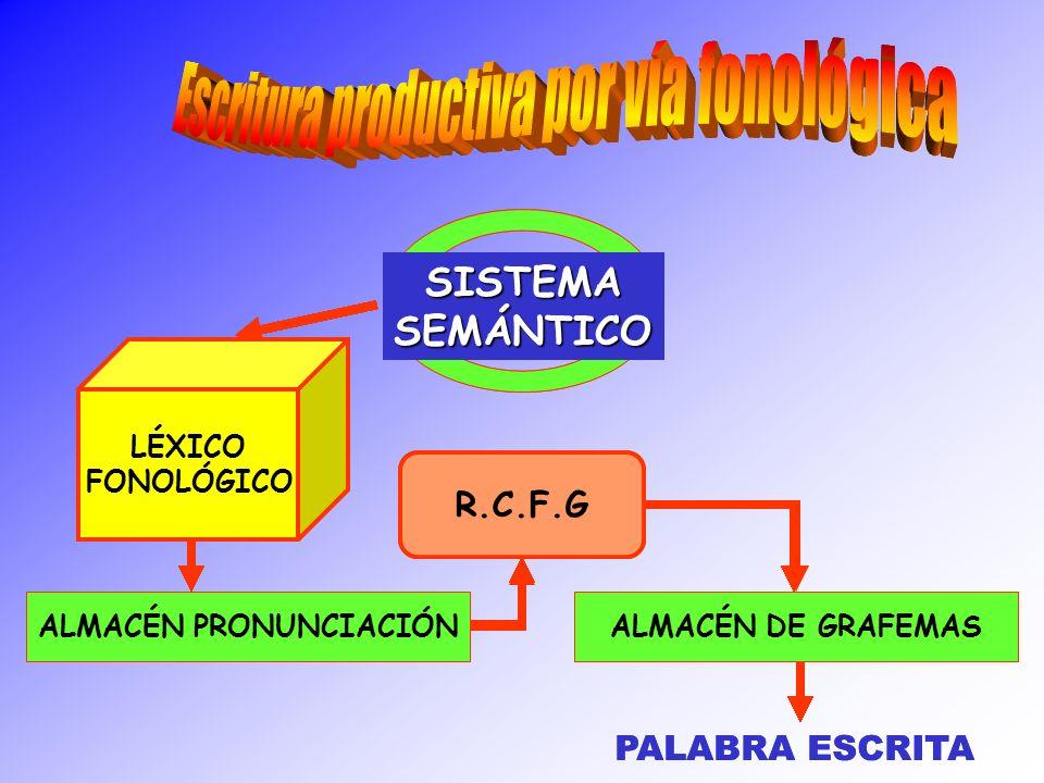 SISTEMASEMÁNTICO LÉXICO FONOLÓGICO ALMACÉN PRONUNCIACIÓN R.C.F.G ALMACÉN DE GRAFEMAS PALABRA ESCRITA SISTEMASEMÁNTICO LÉXICO FONOLÓGICO ALMACÉN PRONUN