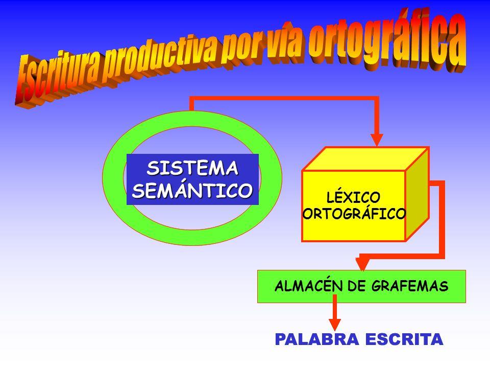 SISTEMASEMÁNTICO LÉXICO ORTOGRÁFICO ALMACÉN DE GRAFEMAS LÉXICO AUDITIVO ANÁLISIS AUDITIVO PALABRA DICTADA ANÁLISIS AUDITIVO LÉXICO AUDITIVO SISTEMASEMÁNTICO LÉXICO ORTOGRÁFICO ALMACÉN DE GRAFEMAS PALABRA ESCRITA
