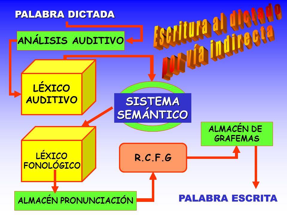 PALABRA DICTADA ANÁLISIS AUDITIVO LÉXICO AUDITIVO SISTEMASEMÁNTICO LÉXICO FONOLÓGICO ALMACÉN PRONUNCIACIÓN R.C.F.G ALMACÉN DE GRAFEMAS PALABRA ESCRITA