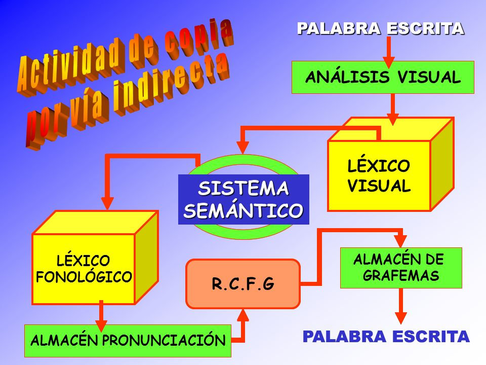 ANÁLISIS VISUAL LÉXICO VISUAL SISTEMASEMÁNTICO LÉXICO FONOLÓGICO ALMACÉN PRONUNCIACIÓN R.C.F.G ALMACÉN DE GRAFEMAS ANÁLISIS VISUAL LÉXICO VISUAL SISTE