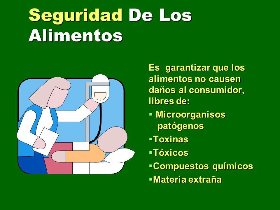 Seguridad De Los Alimentos Es garantizar que los alimentos no causen daños al consumidor, libres de: Microorganisos patógenos Microorganisos patógenos