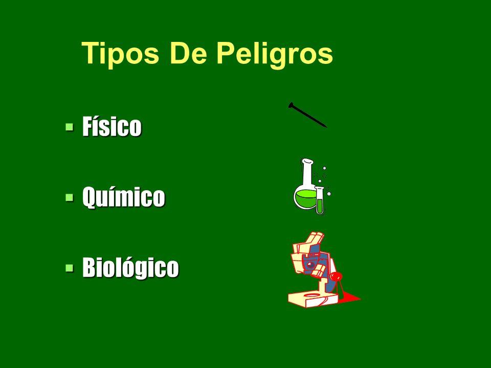 Físico Físico Químico Químico Biológico Biológico Tipos De Peligros