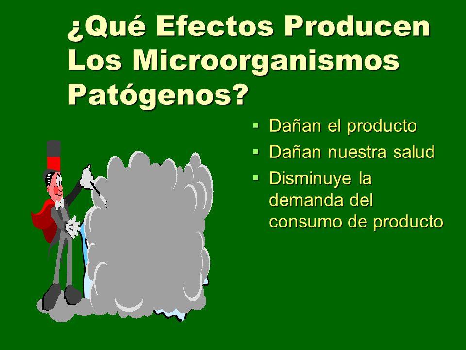 ¿Qué Efectos Producen Los Microorganismos Patógenos? Dañan el producto Dañan el producto Dañan nuestra salud Dañan nuestra salud Disminuye la demanda