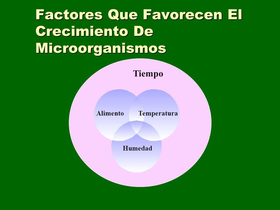 Factores Que Favorecen El Crecimiento De Microorganismos Tiempo TemperaturaAlimento Humedad