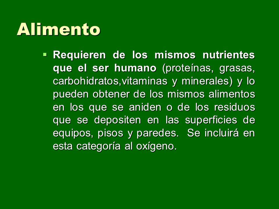 Alimento Requieren de los mismos nutrientes que el ser humano (proteínas, grasas, carbohidratos,vitaminas y minerales) y lo pueden obtener de los mism
