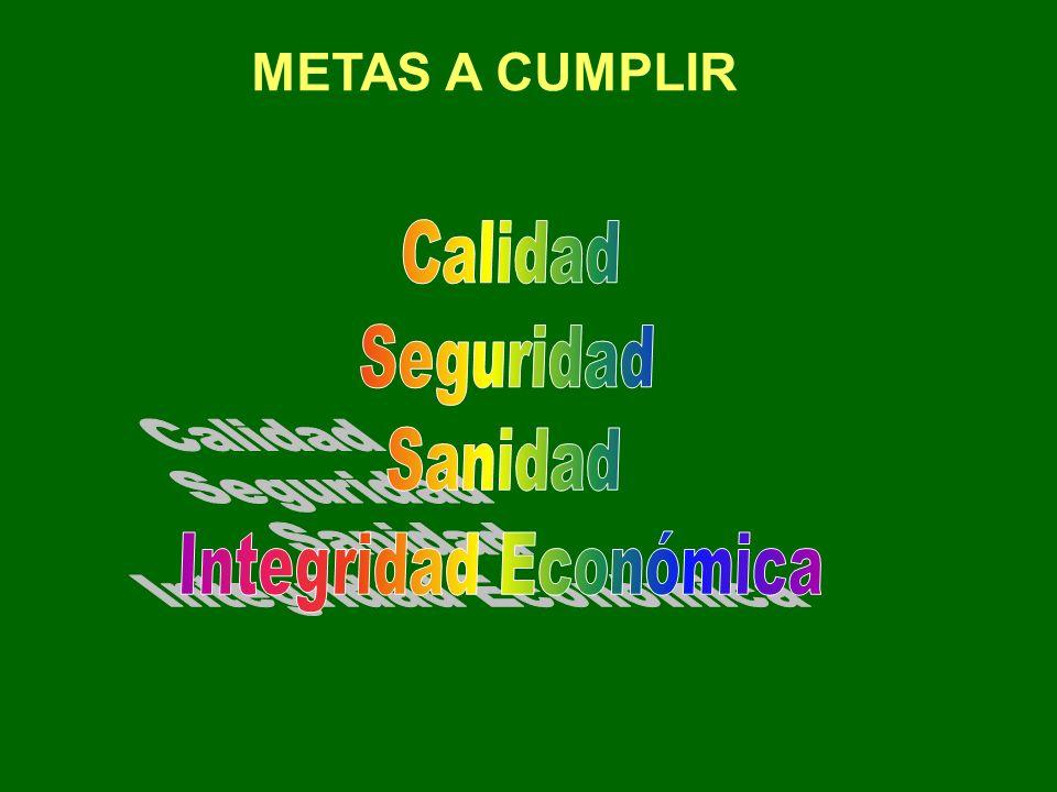 METAS A CUMPLIR
