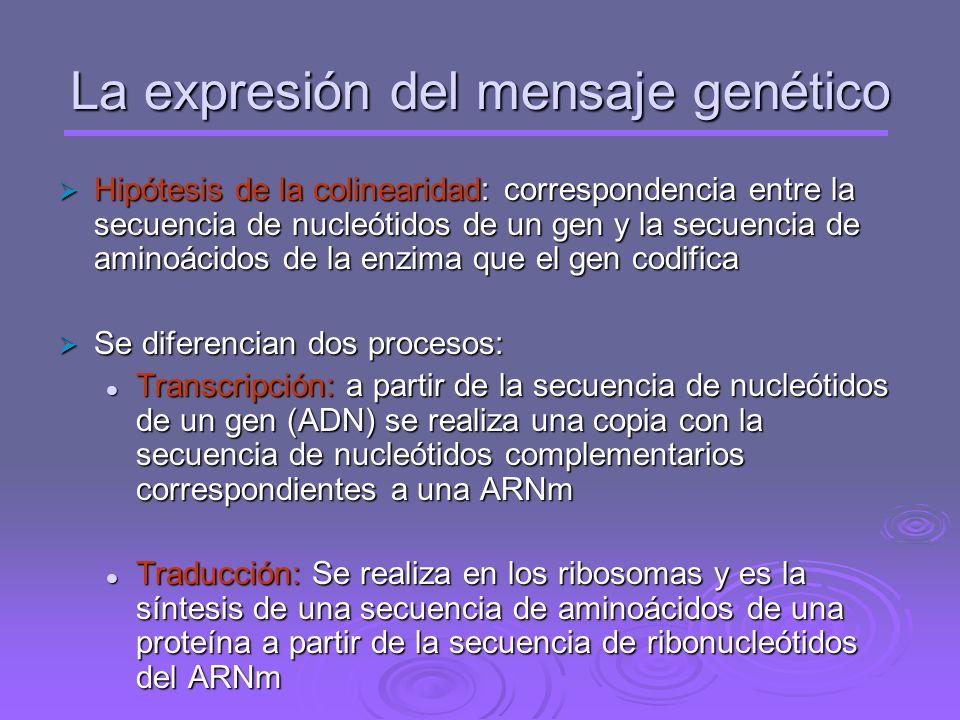 Propiedades del proceso de replicación: - Es semiconservativa - Es bidireccional - Secuencial y Ordenada - Utiliza sustratos activados - Exacta - Disc