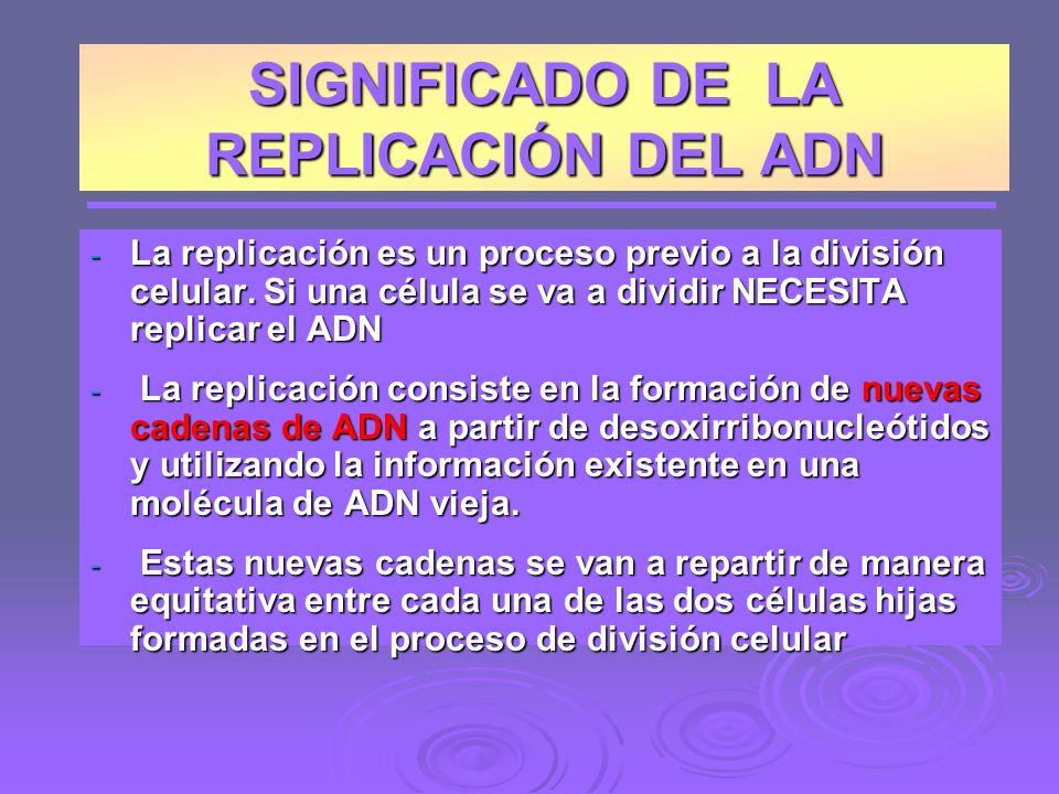 - La replicación es un proceso previo a la división celular.