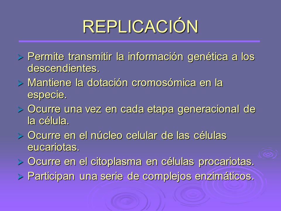 REPLICACIÓN Permite transmitir la información genética a los descendientes.