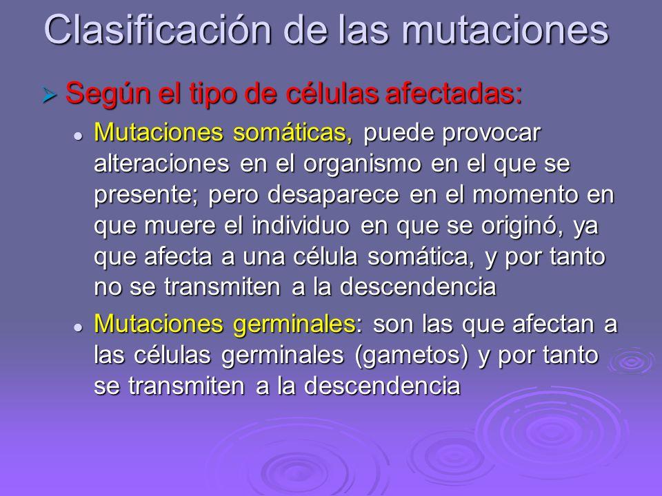 Los cambios en el ADN se traducen en cambios en las proteínas y por tanto las mutaciones pueden afectar a la capacidad de supervivencia de un organism