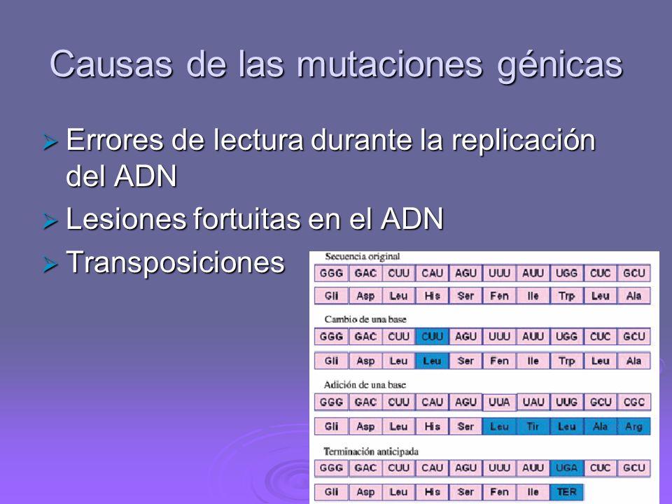 Origen de las mutaciones Mutaciones naturales o espontáneas Mutaciones naturales o espontáneas Se originan al azar. La tasa de mutación espontánea es