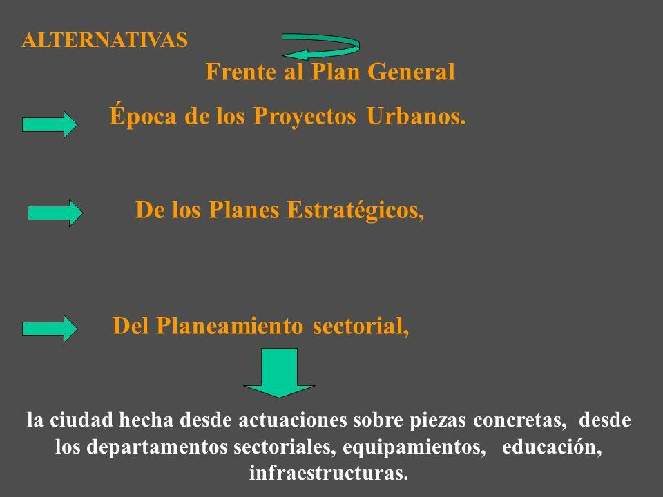 1.- OTRAS CAUSAS. Complejidad y exhaustividad en las determinaciones del Plan Complejidad y exhaustividad en las determinaciones del Plan Lentitud en