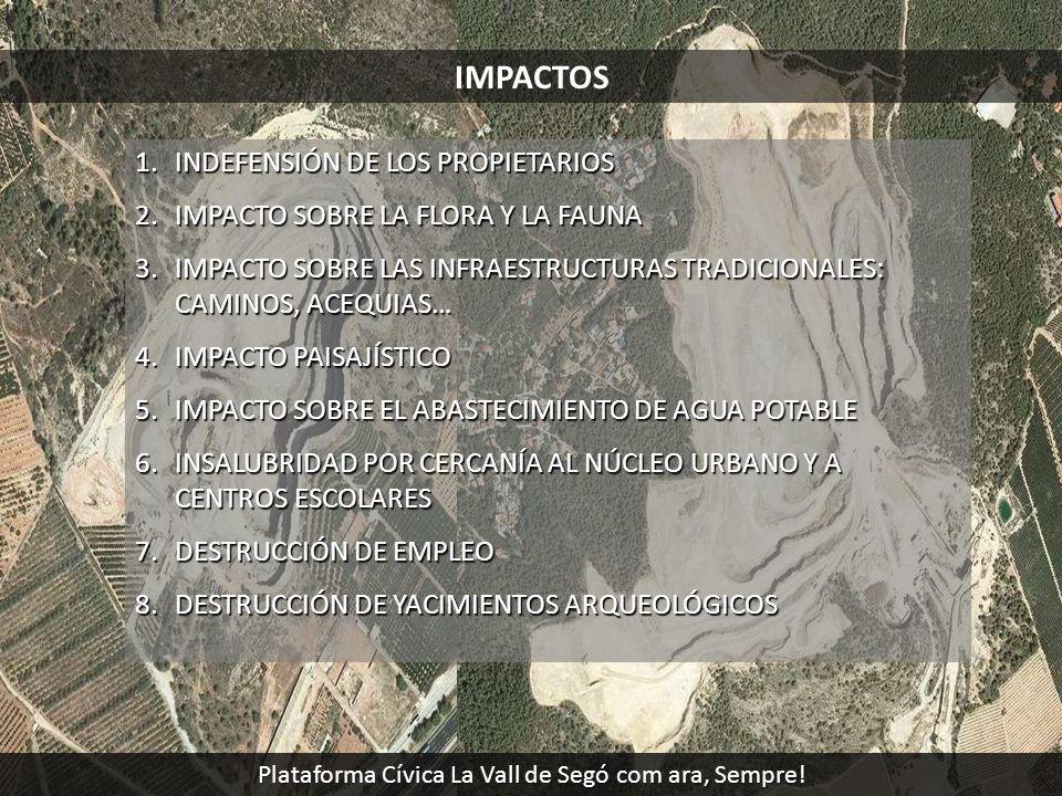 IMPACTOS 1.INDEFENSIÓN DE LOS PROPIETARIOS 2.IMPACTO SOBRE LA FLORA Y LA FAUNA 3.IMPACTO SOBRE LAS INFRAESTRUCTURAS TRADICIONALES: CAMINOS, ACEQUIAS…