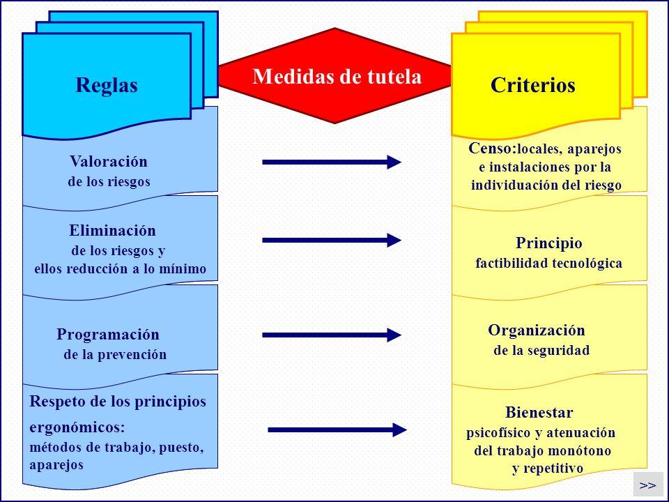 Medidas de tutela CriteriosReglas Valoración de los riesgos Censo: locales, aparejos e instalaciones por la individuación del riesgo Eliminación de lo