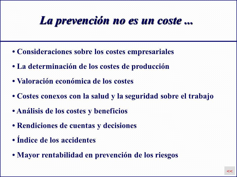 La prevención no es un coste... Consideraciones sobre los costes empresariales Valoración económica de los costes Costes conexos con la salud y la seg