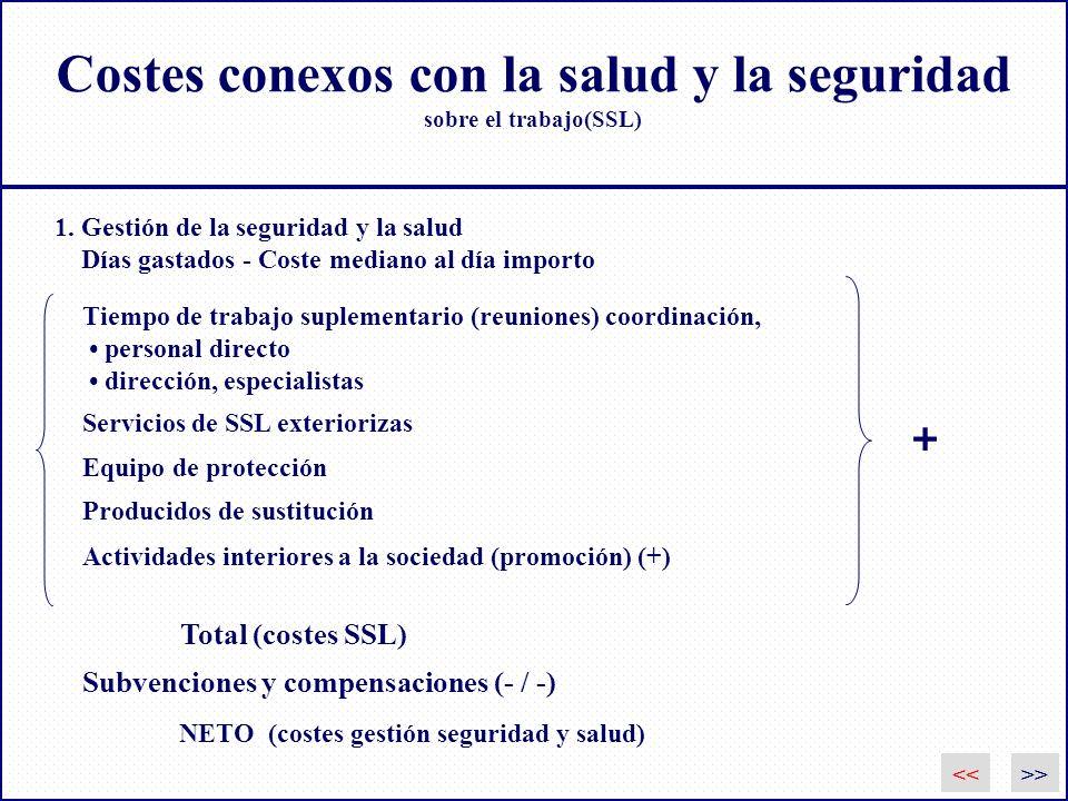 Costes conexos con la salud y la seguridad sobre el trabajo(SSL) Servicios de SSL exteriorizas Equipo de protección Producidos de sustitución Activida