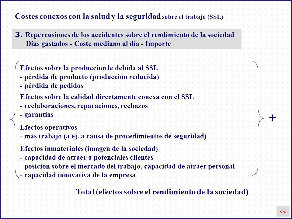Costes conexos con la salud y la seguridad sobre el trabajo (SSL) 3. Repercusiones de los accidentes sobre el rendimiento de la sociedad Días gastados