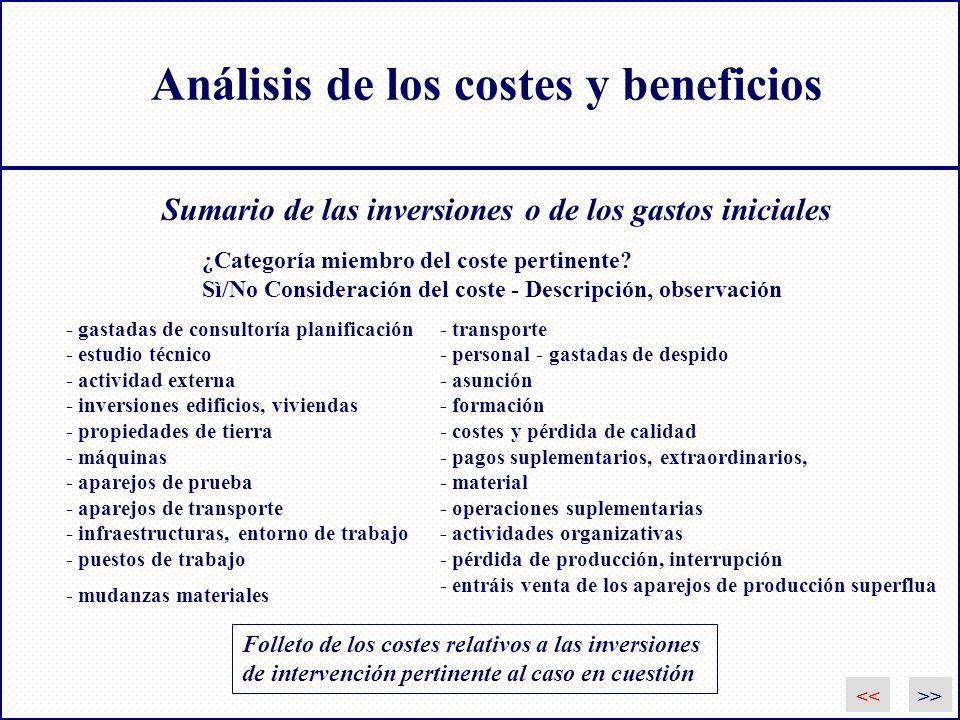 Análisis de los costes y beneficios Folleto de los costes relativos a las inversiones de intervención pertinente al caso en cuestión ¿Categoría miembr