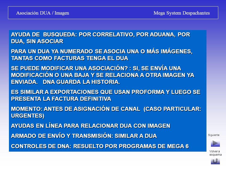 Siguiente Asociación DUA / Imagen Mega System Despachantes