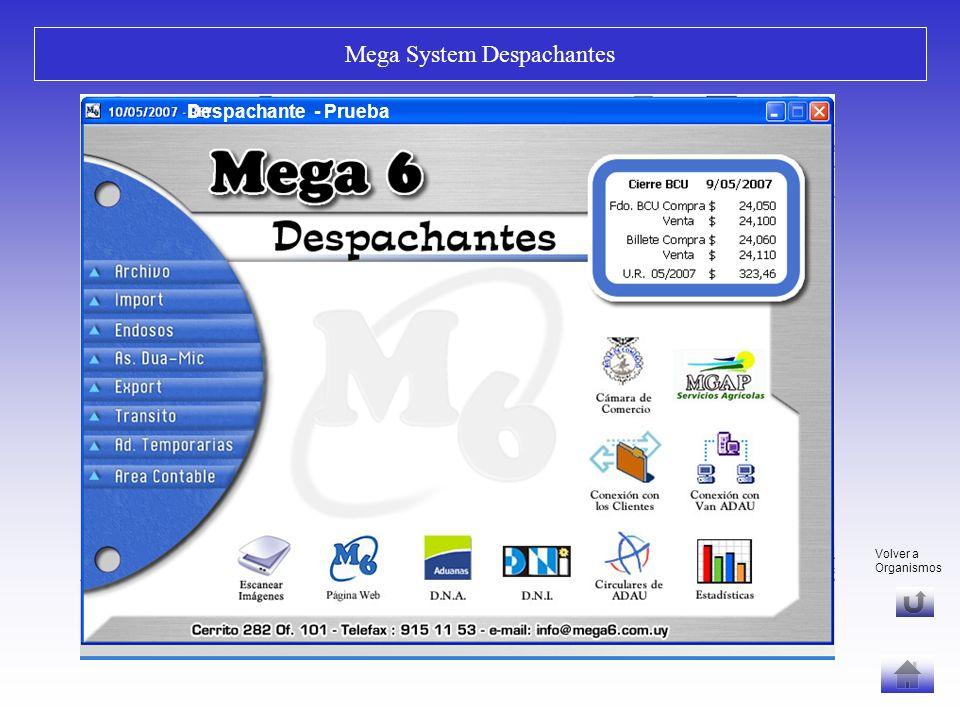 Fin Correlación / Consolidación Mega System Despachantes