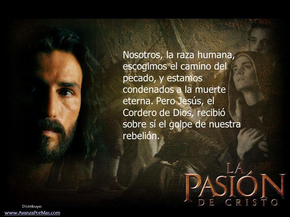 Distribuye: www.AvanzaPorMas.com Nosotros, la raza humana, escogimos el camino del pecado, y estamos condenados a la muerte eterna.